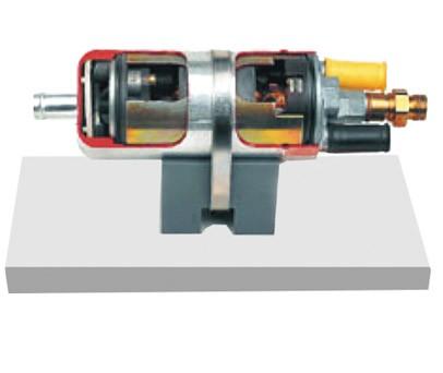 电控燃油泵解剖模型