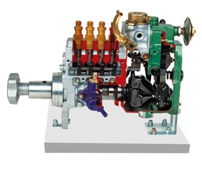 直列喷射泵解剖模型