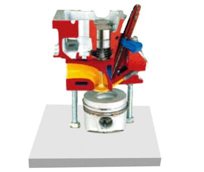 四阀直喷式柴油机气缸盖解剖模型