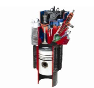 柴油机气缸解剖模型