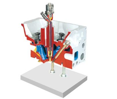 直喷式发动机气缸盖解剖模型