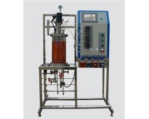 在位/离位灭菌―机械搅拌玻璃发酵罐